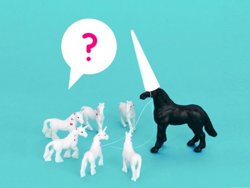 Unicorn quiz